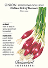 Onion Bunching/Scallion Italian Red of Florence HEIRLOOM Seeds