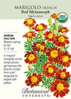 Marigold  French Red Metamorph Organic Seeds