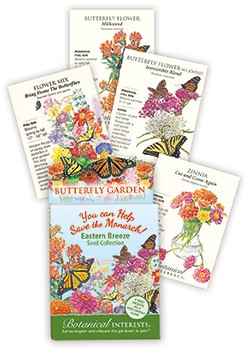 Butterfly Collection Eastern Breeze