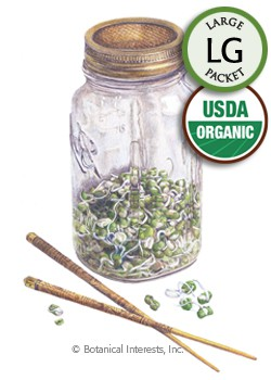 Sprouts Mung Bean Organic Seeds (LG)