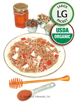 Sprouts Buckwheat Organic Seeds (LG)